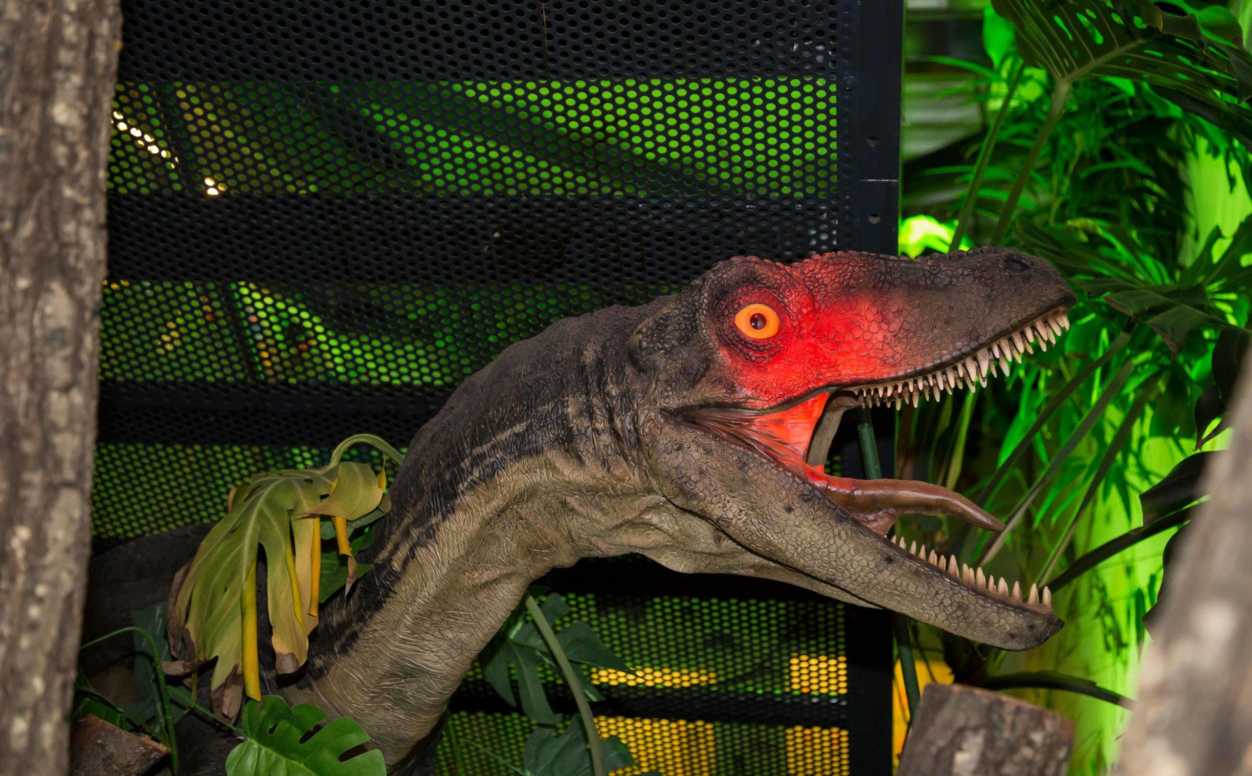 Dinosaurier in der Bionik Ausstellung