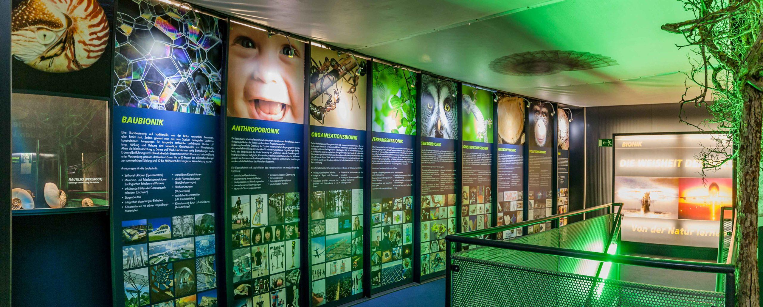 Bionik Ausstellung Übersicht der Bereiche