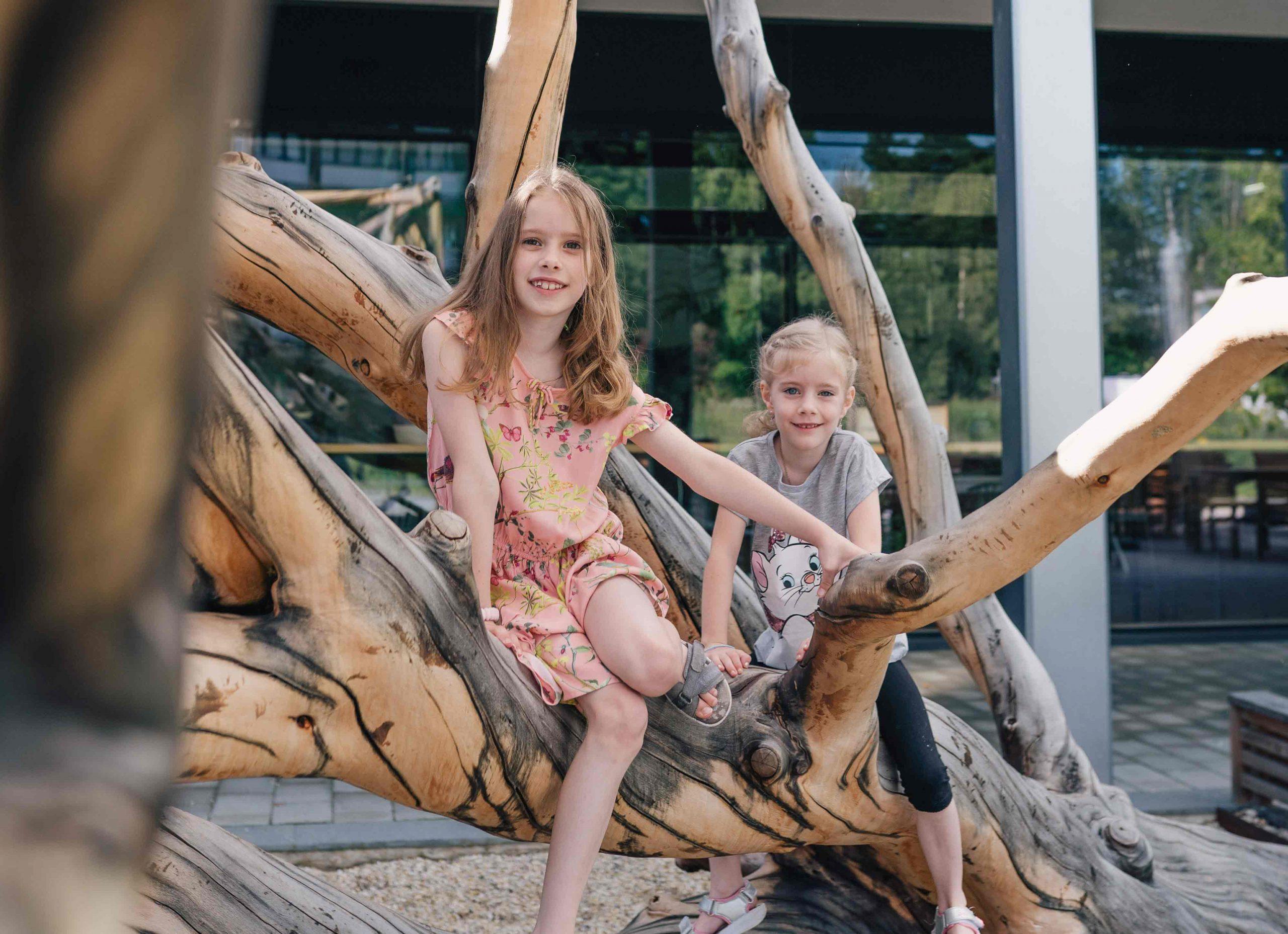 Kinder am Kletterbaum frei zugänglich am Ökopark Hartberg