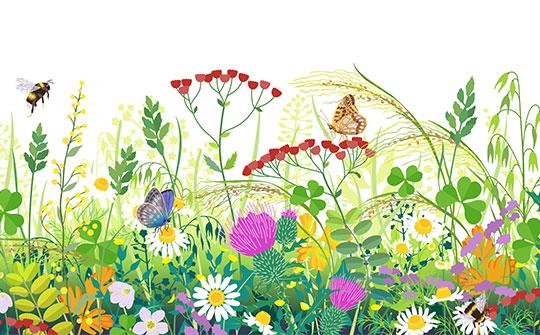 Dschungel im Garten Image