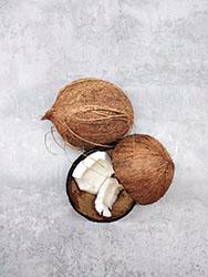 Kokosnussfasern
